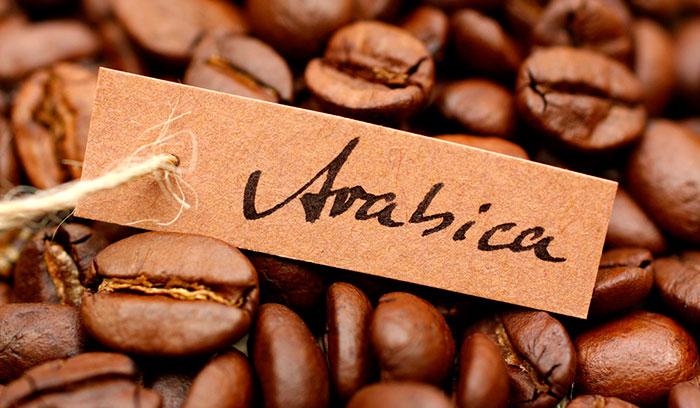 Кофе Today