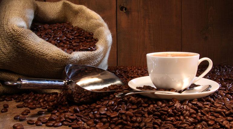 Лучшие сорта доминиканского кофе: посадка и уход