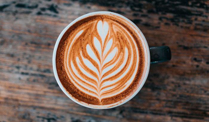 Розетка, она же растение, листики на кофе