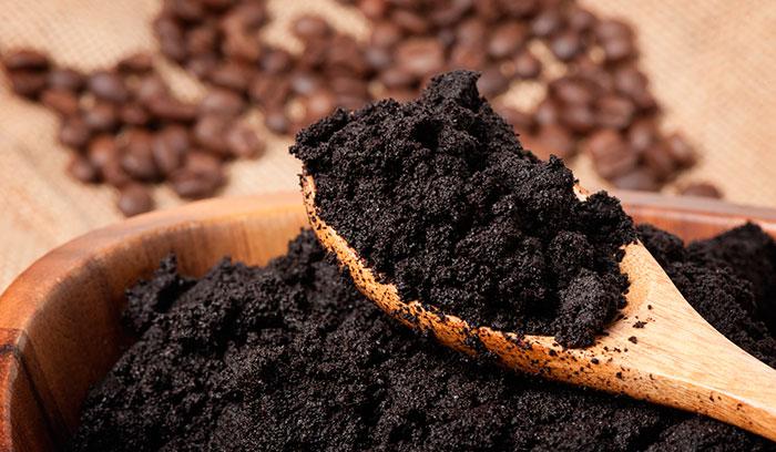 Польза кофе для растений
